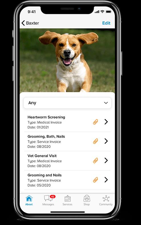 Pet services management system Pet Records mobile view