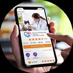Pet Connect pet services directory mobile view